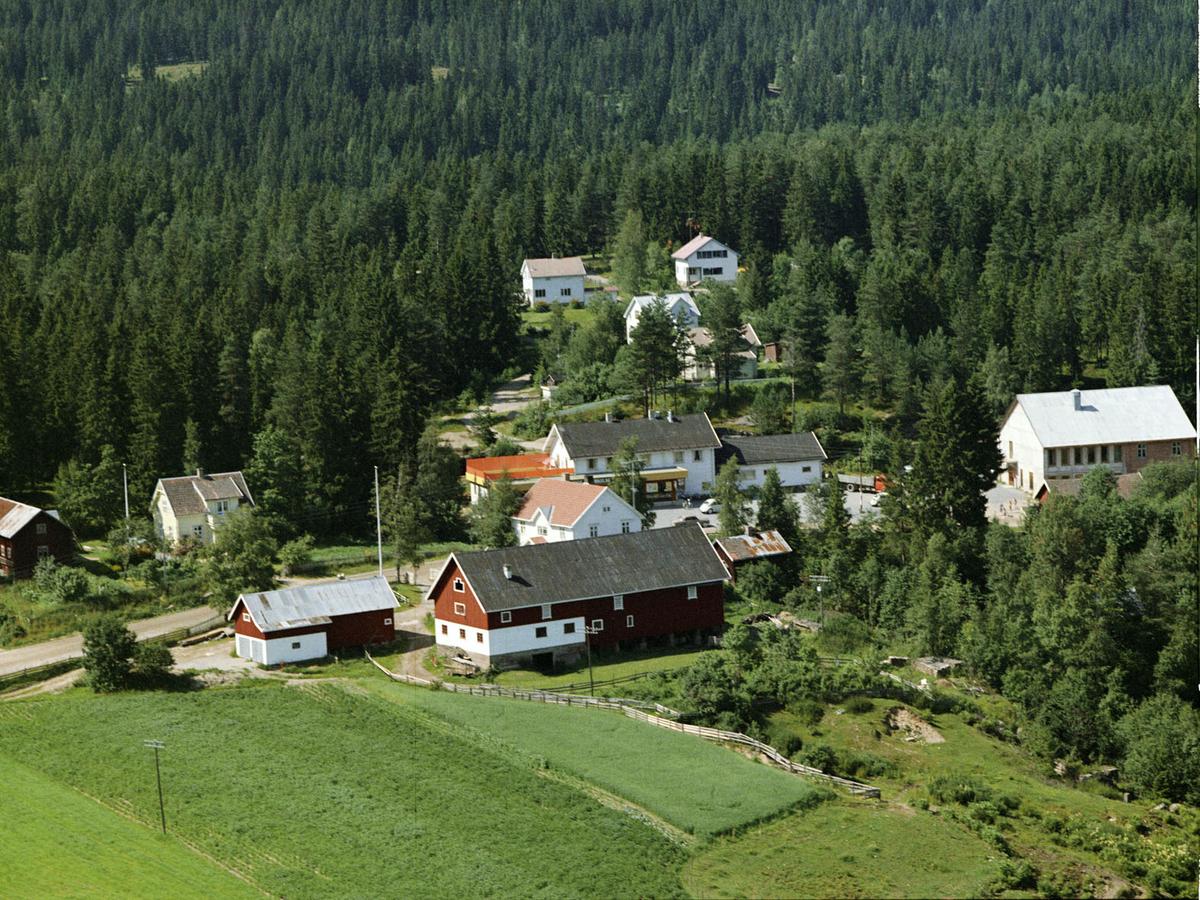 FOSSUM, ÅSGREINA
