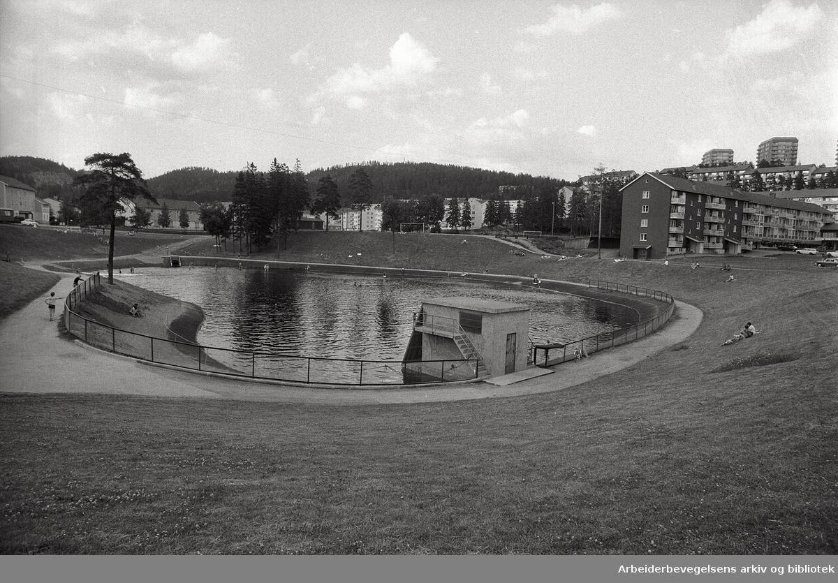 Årvoll-dammen,.juli 1971
