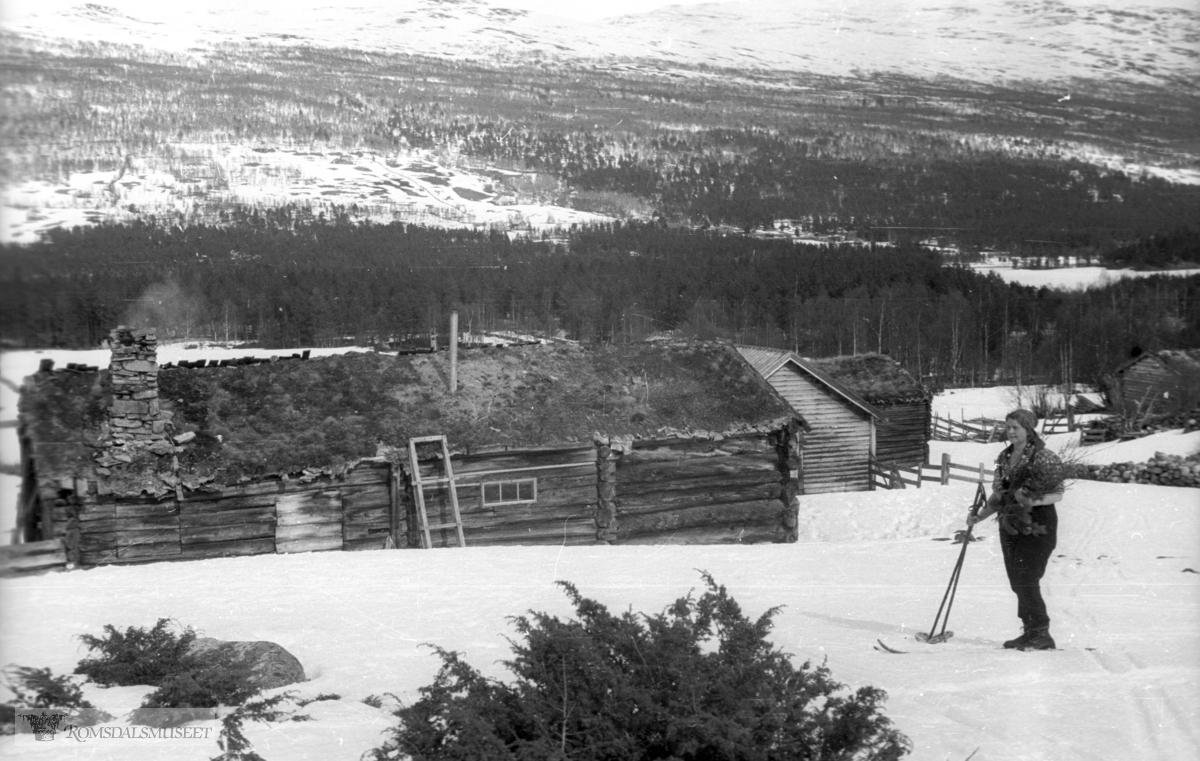 (Filmbeholder 19953c) .Lesja påsken 1946.