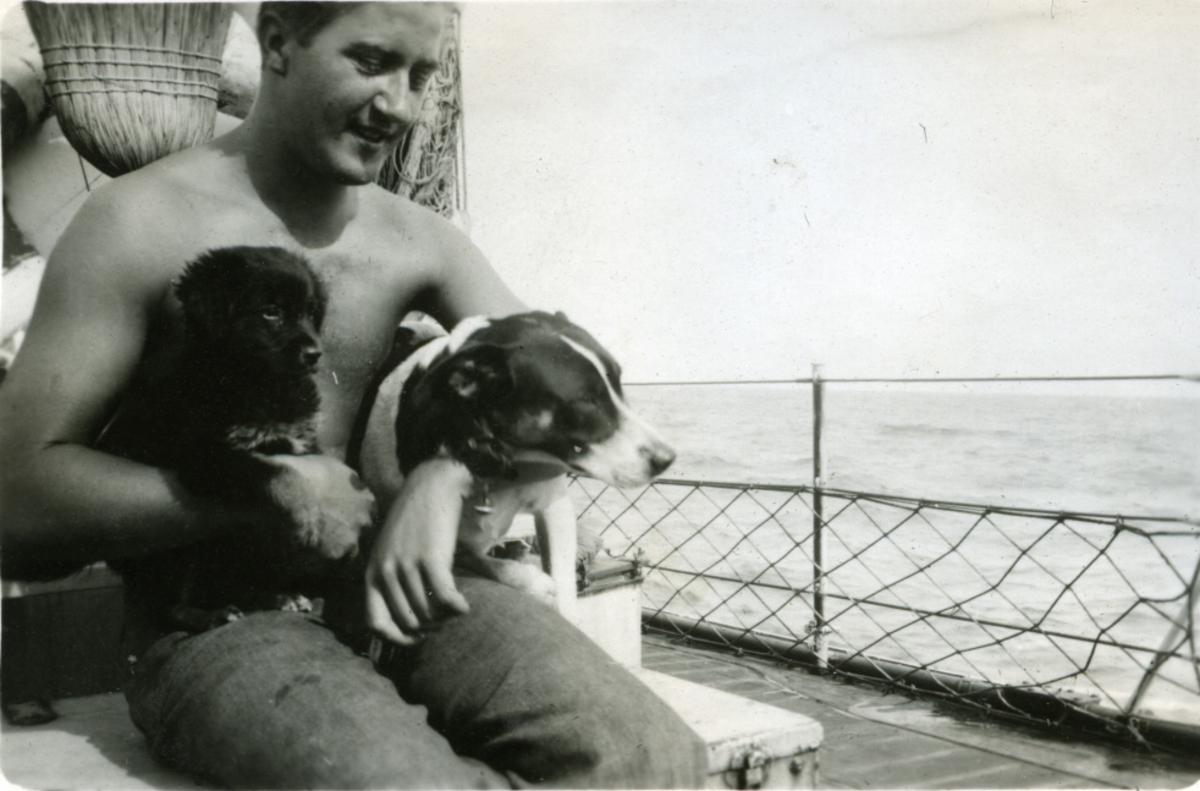 Album Ubåtjager King Haakon VII 1942-1946 Forskjellige bilder. Skipshundene Idar og Rørvik.