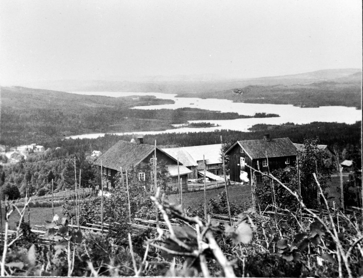 Kvisla gård med Næra i bakgrunnen, Næroset, Ringsaker.