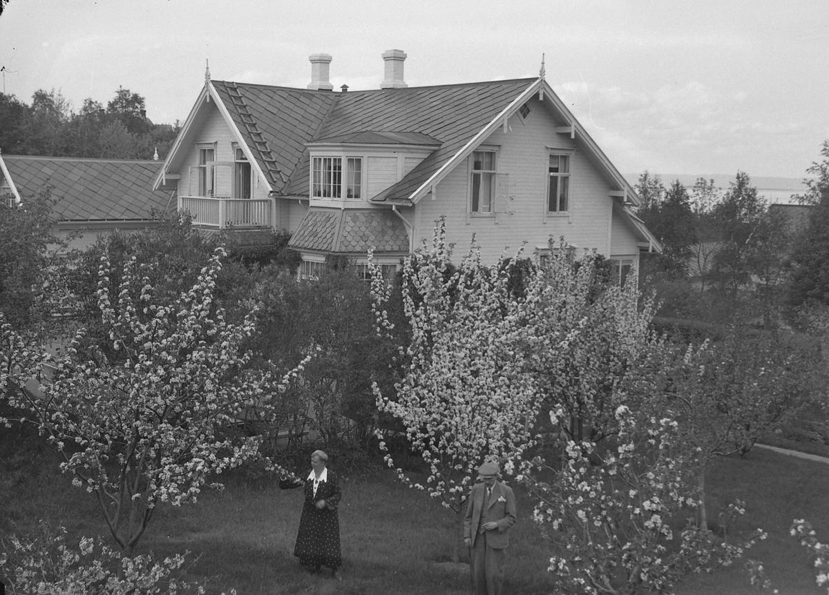 Direktør Zachariassens bolig på Charlottenlund