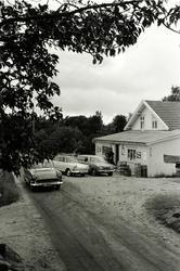 Alf Prøysen med familie på hytta, Tromøya ved Arendal, foto