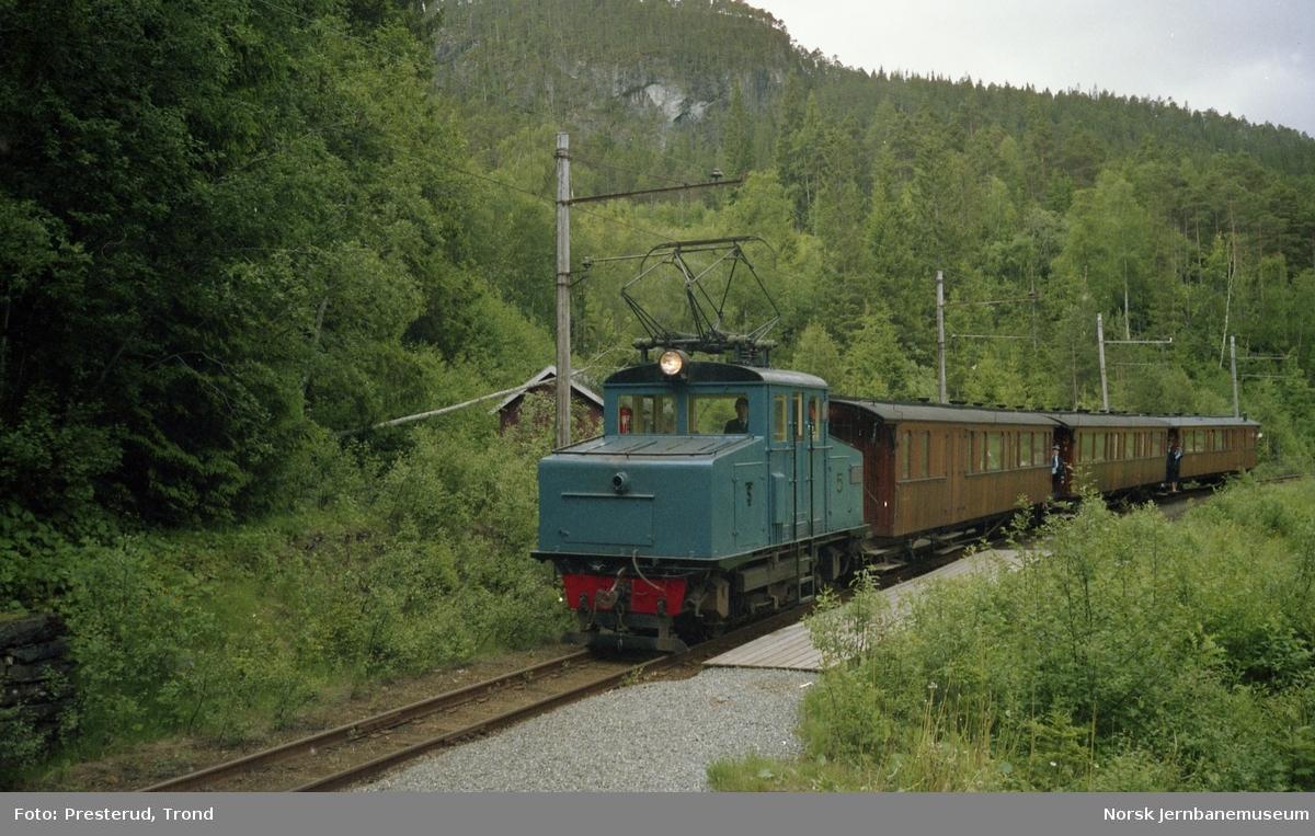 Thamshavnbanens lokomotiv nr. 5 med tog