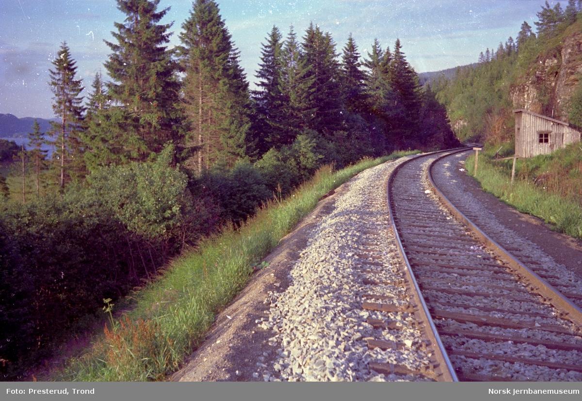 Linjen i nærheten av Langstein