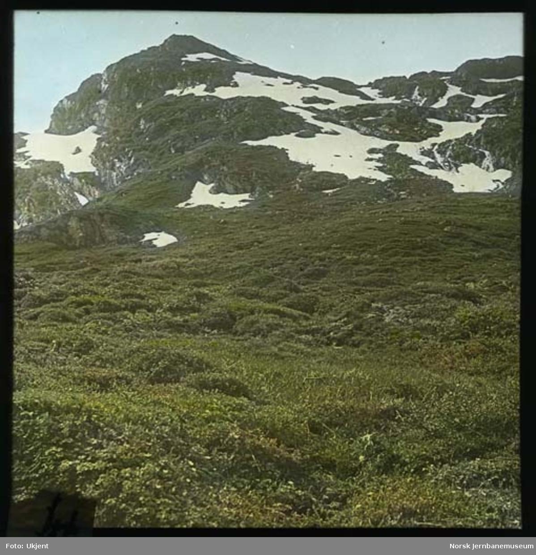 Ikke stedfestede motiver fra norske fjell