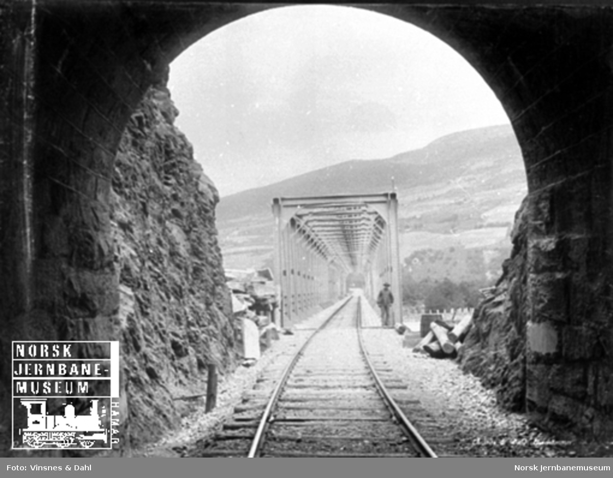 Linjeføringen ut fra Randklev tunnel mot brua over Lågen
