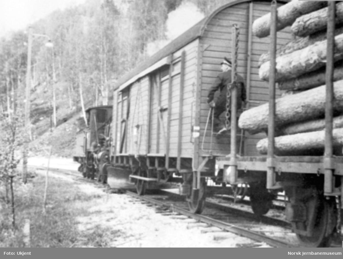 Damplokomotiv type 21 skifter på Rødberg stasjon