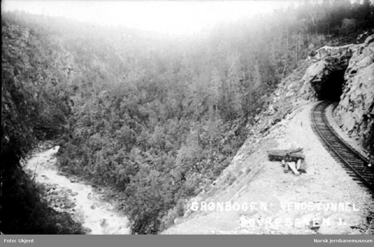 Linjeføring mot Grønbogen vendetunnel med Jora elv i dalbunnen