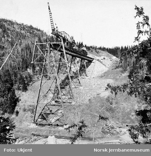 Trolldalen viadukt under bygging : pilar 5