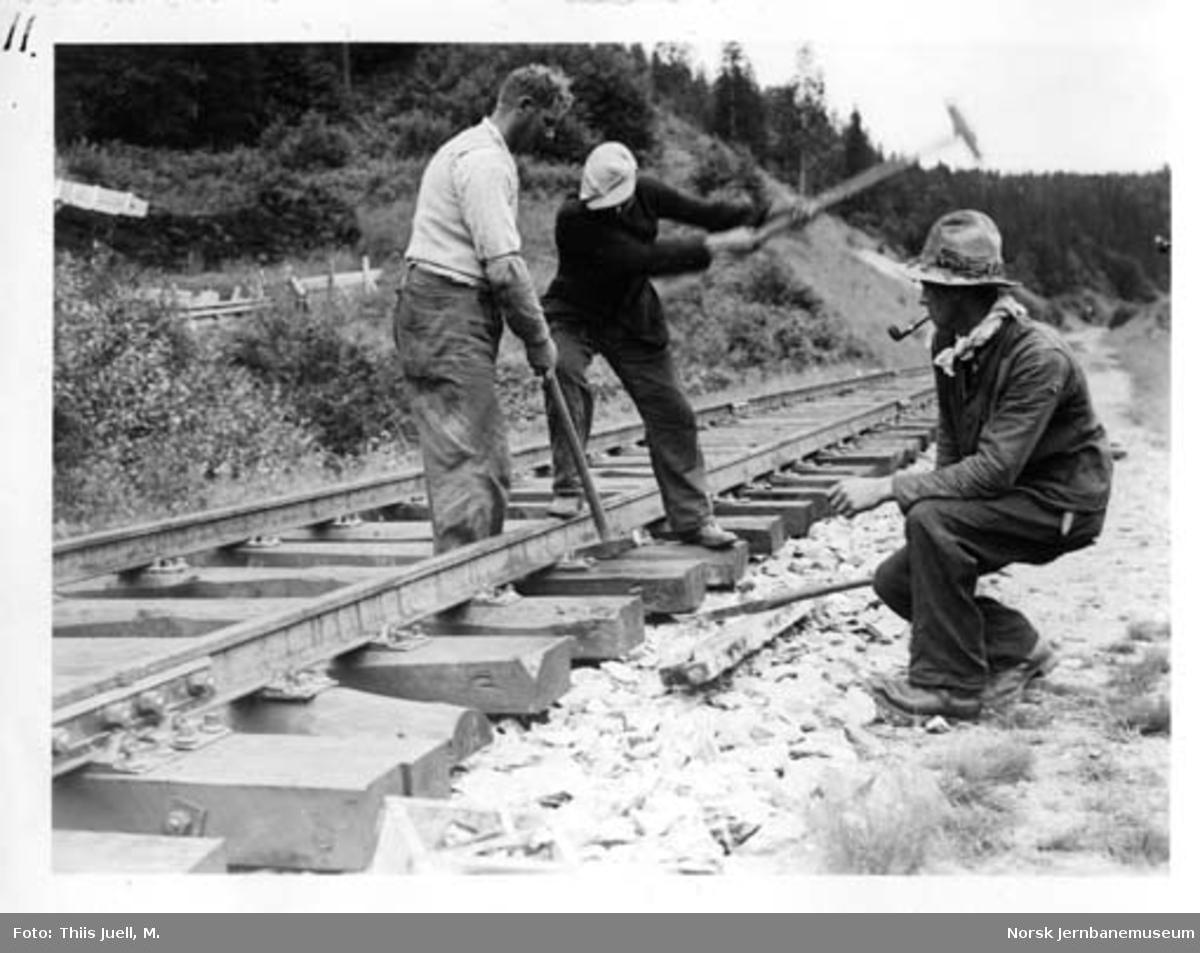 Skinnelegging på Nordlandsbanen mellom Bunes tunell II og Okshammer tunell