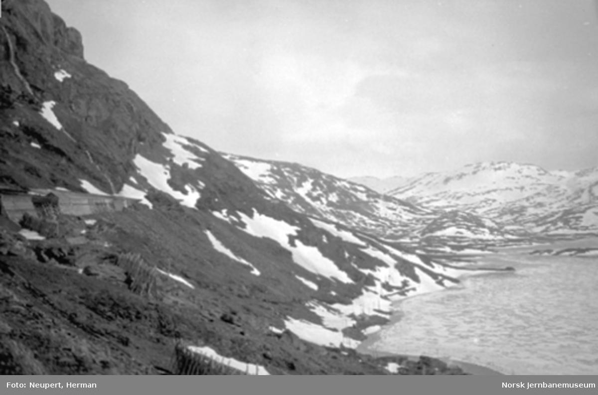 Parti på Bergensbanens strekning Hallingskeid-Myrdal