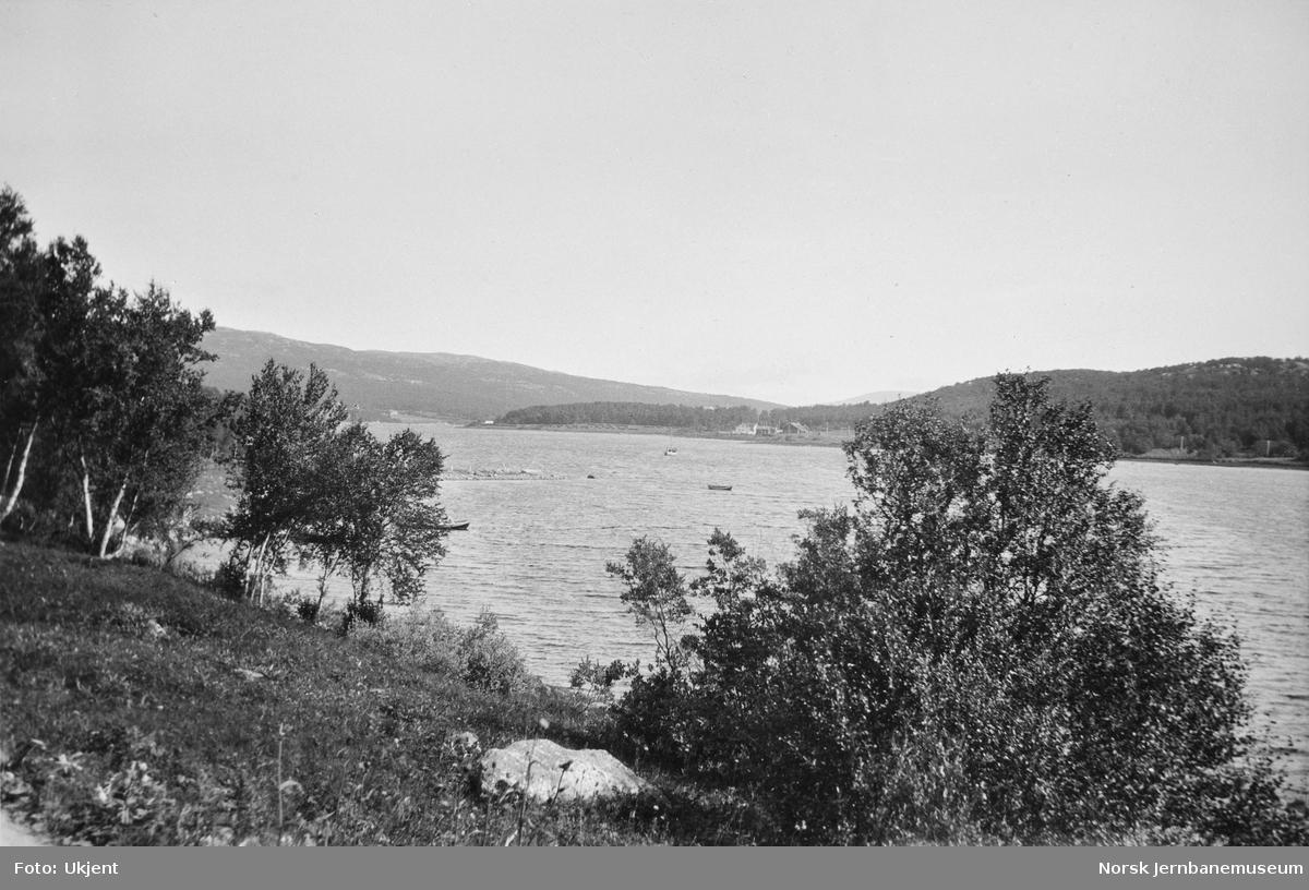 Parti fra Jarfjorden