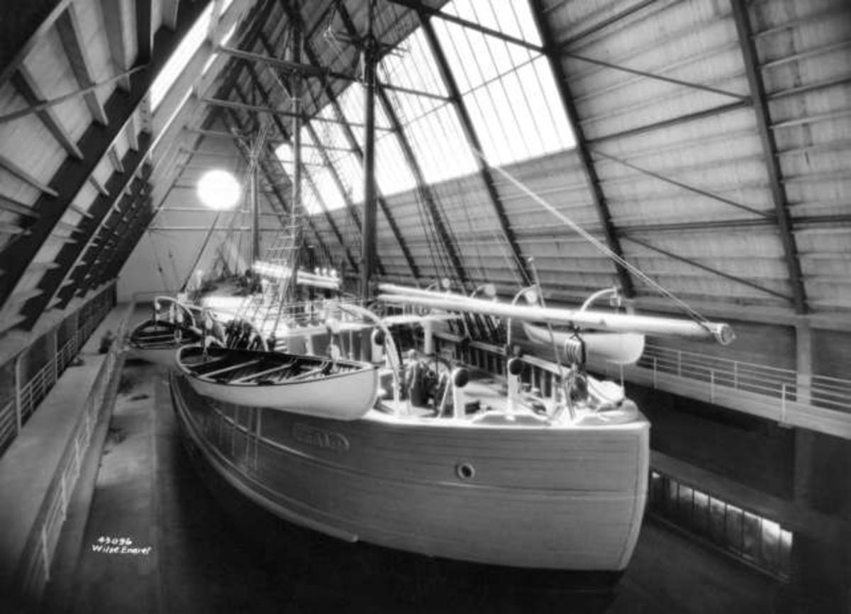 Dampbåter/Skip, Motorbåter/Skip