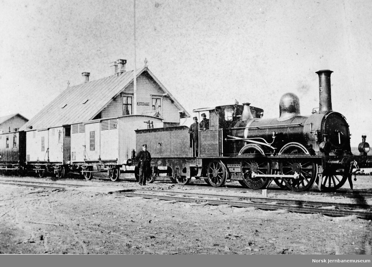 Prestebakke stasjon med tog fra Dalslandsbanen, trukket av damplokomotiv nr. 3 Landshöfdingen