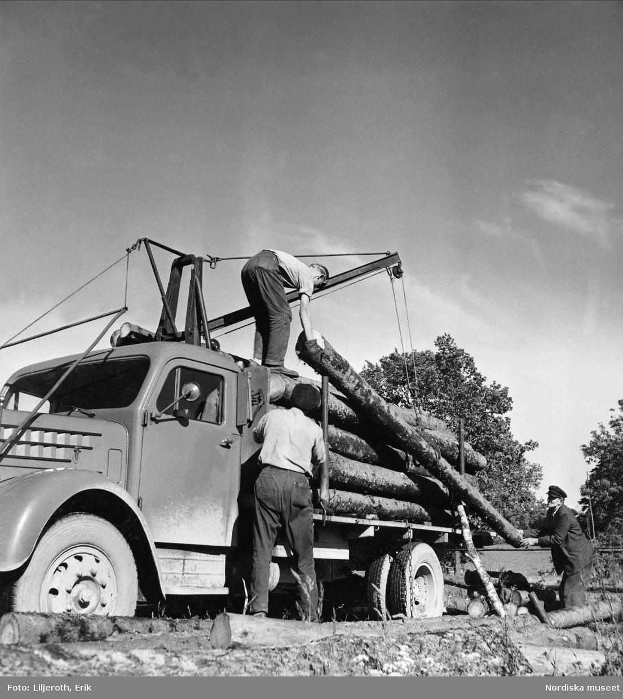 Tre män som lastar timmer på en lastbil
