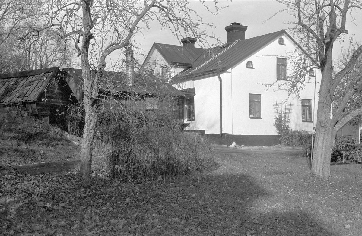 Källare och bostadshus, Viggeby 3:1, Dalby socken, Uppland 1984