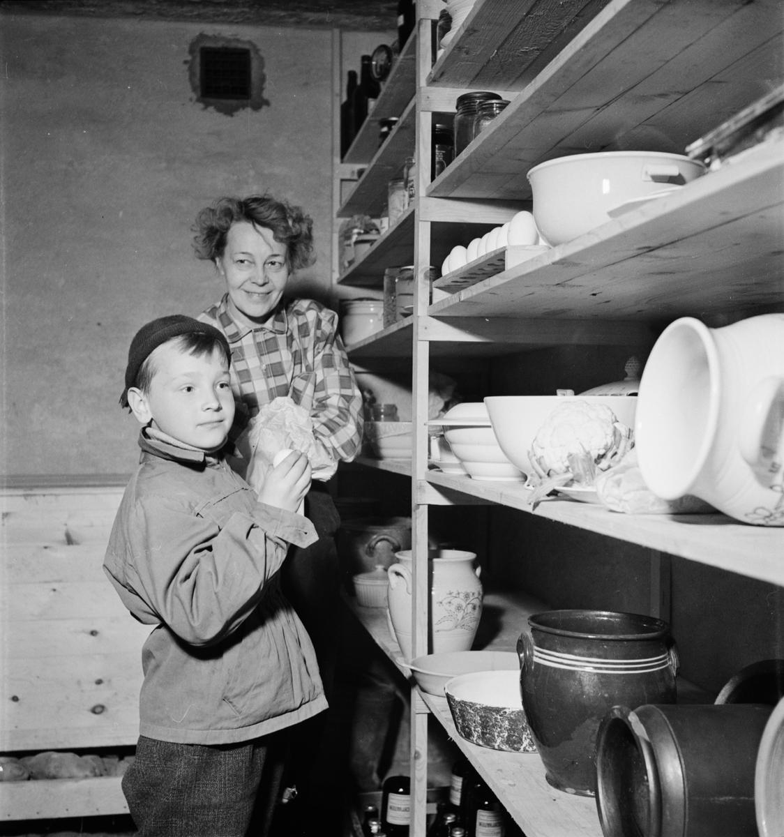 Matkällaren vid urmakare Hemlins sommarstuga, sannolikt Uppland, 1953