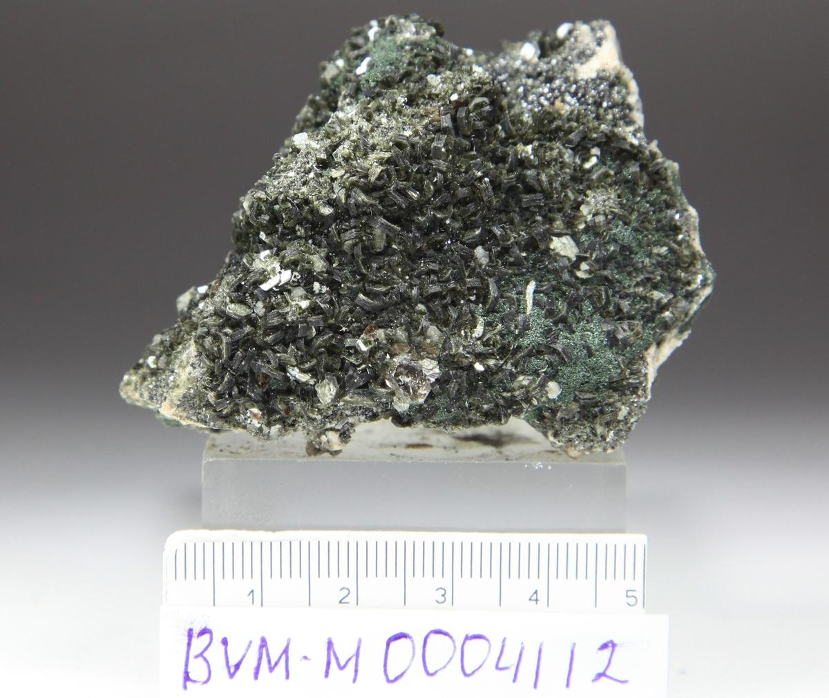 Muskovitt, krystaller på matriks. Kvarts, kloritt, feltspat? evt kalsitt, Magnetitt + brun (titanitt?)