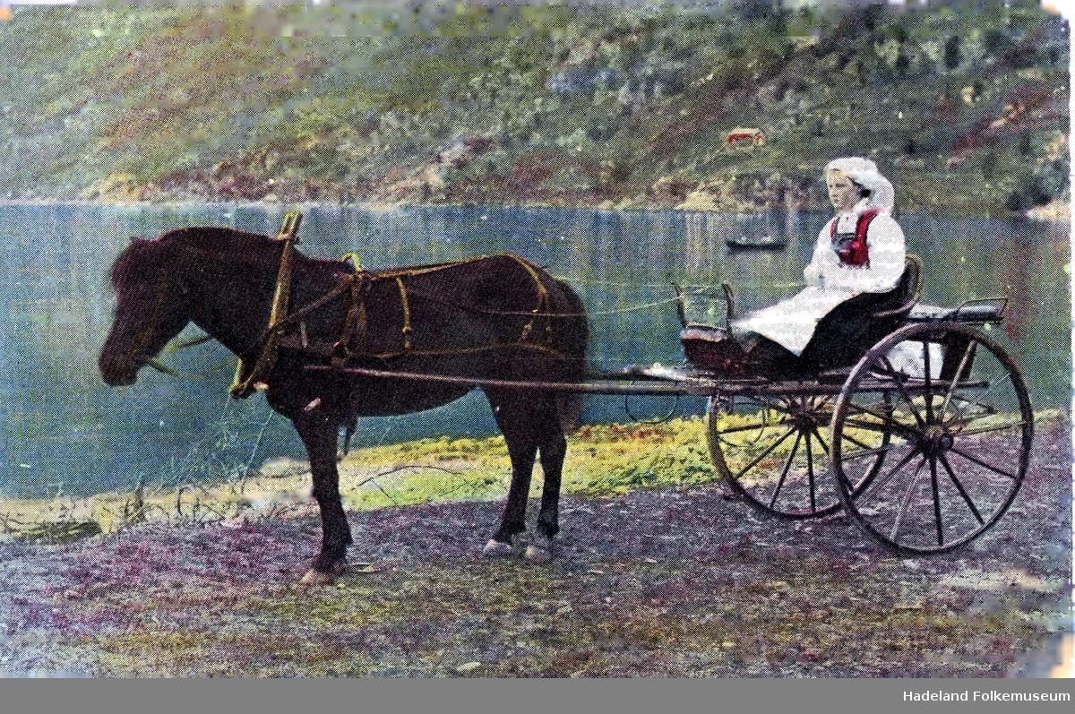 Bunadkledd kvinne i trille bak hest. Fjordlandskap.