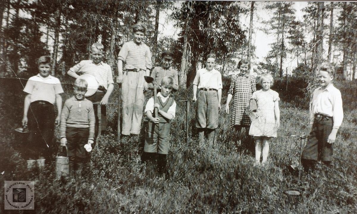 Skoleklasse på Austre Sveindal på skogplanting. Grindheim senere Audnedal.