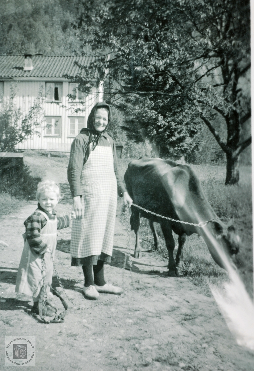 Bestemor Grethe Høyland med barnebarnet på Høyland. Grindheim Audnedal.