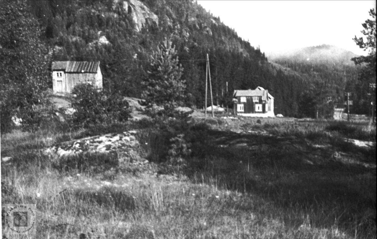Bergan, Bjelland.