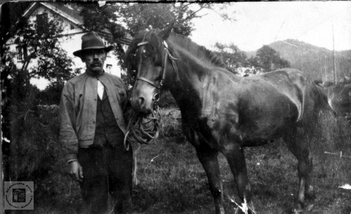 Aanen Skjævesland med hest.