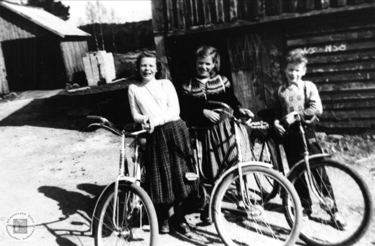 Søsknene Åse Karin, Edith og Ånen Grimestad, Øyslebø.