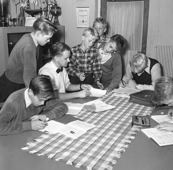 Juniorkurs i matematik med IFK Kamraterna