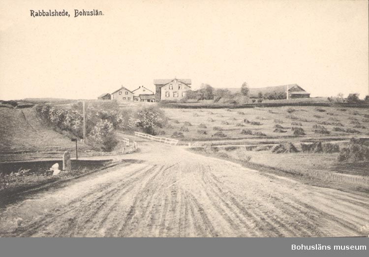 """Tryckt text på kortet: """"Rabbalshede. Bohuslän"""". """"Förlag: F. L. Schewenius Munkedal N:o"""""""