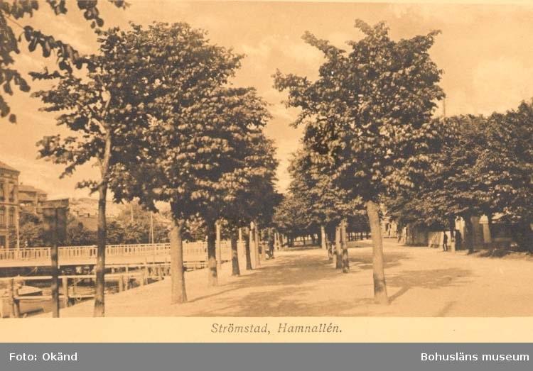 """Tryckt text på kortet: """"Strömstad. Hamnallén."""""""