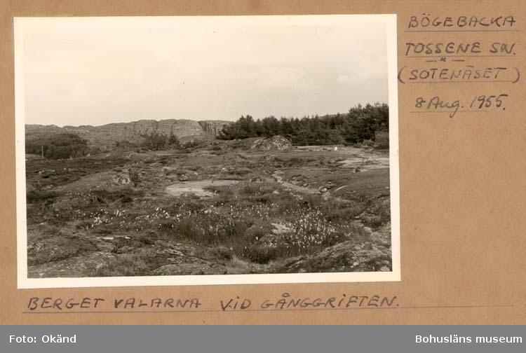 """Noterat på kortet: """"Bögebacka Tossene Sn."""" """"Berget Valarna vid gånggriften."""" """"Aug. 1955."""""""