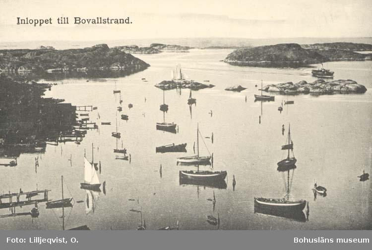 """Tryckt text på kortet: """"Inloppet till Bovallstrand."""""""