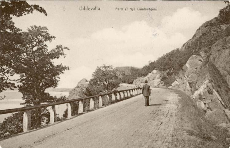 """Tryckt text på vykortets framsida: """"Uddevalla, Parti af Nya Landsvägen."""""""