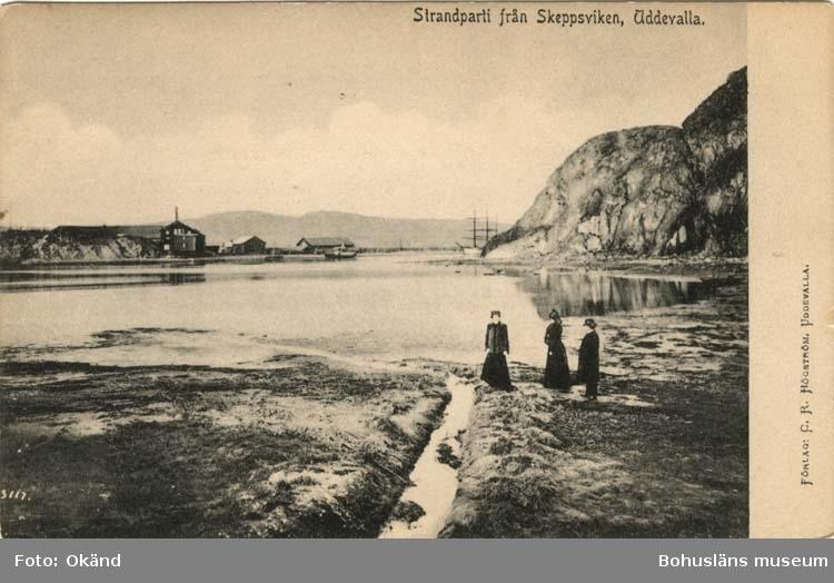"""Tryckt text på vykortets framsida: """"Strandparti från Skeppsviken Uddevalla."""""""