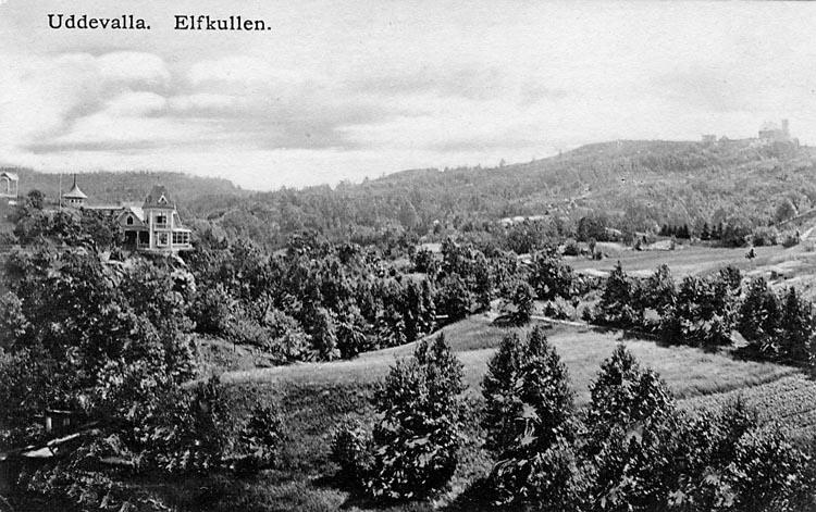 """Tryckt text på vykortets framsida: """"Uddevalla Elfkullen"""" Handskriven text på vykortets baksida: """"Köpt hos Rosa Nilsson."""""""
