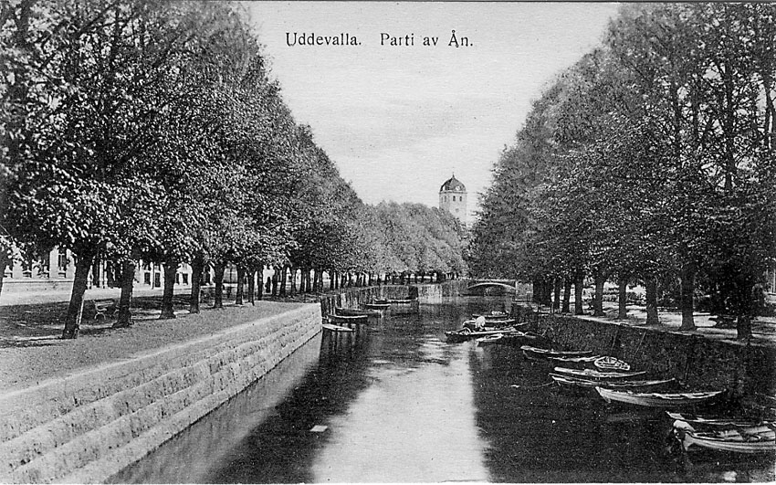 """Tryckt text på vykortets framsida: """"Uddevalla Parti av Ån""""."""