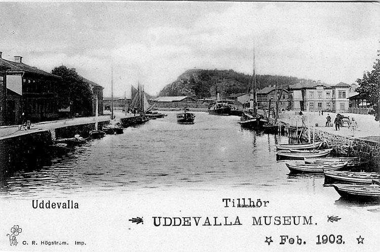 """Tryckt text på vykortets framsida: """"Hamnparti, Uddevalla"""".  ::"""