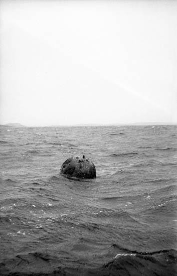 """Enligt fotografens notering: """"Minan i Lysekil 1961""""."""