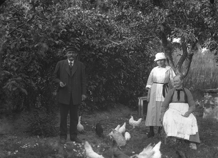 """Enligt fotografens noteringar: """"Fru Lindberg, Munkedal, en gammal treflig dam som jag ofta gästade, Selma Sahlberg, Maka till Verkmästare Lindberg."""""""