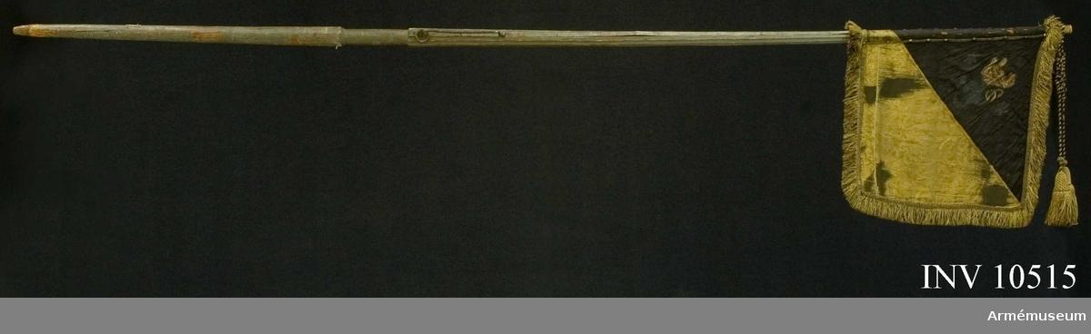 Grupp B.   Enl förordning 17000802. Duk av sidendamast, diagonalt delad i två fält, det övre inre svart, det nedre yttre gult. Målat emblem, i övre inre hörnet, omvänt lika på båda sidor: Västergötlands sköldemärke: ett upprätt lejon, övre delen i guld med brun skuggning, nedre  delen i mörkgrått, följt av tvenne svartskuggade sexuddiga stjärnor i silver. Runt kanten en 60 mm bred frans av svart och gult silke.   Fäst på stången med tre svarta och gula sidenband samt förgyllda spikar.Stång av furu, sexrefflad och förstärkt med tre järnskenor.