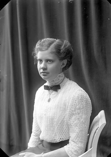 """Enligt fotografens journal nr 2 1909-1915: """"Arfvidsson, Fröken Maria, Dalstorp""""."""