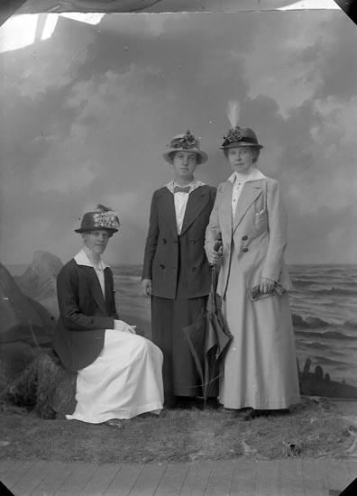 """Enligt fotografens journal nr 2 1909-1915: """"Andersson, Malla, Villa Hemfrid, Här""""."""