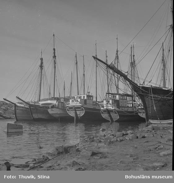 """Text till bilden: """"Hamnen, Skärhamn""""."""