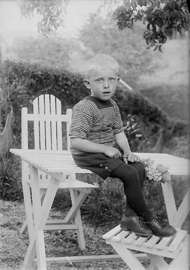 Pojke med syrenkvist i handen