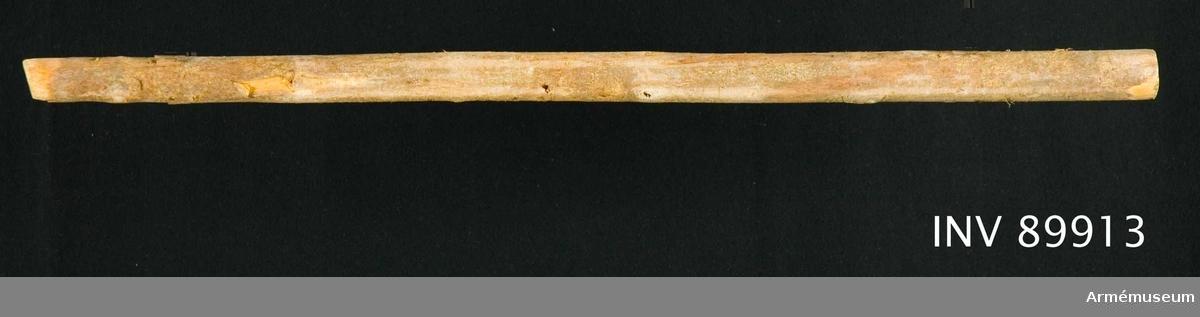 Del av stång av gran. Avsågad av utställningstekniska skäl under 1800-talet.