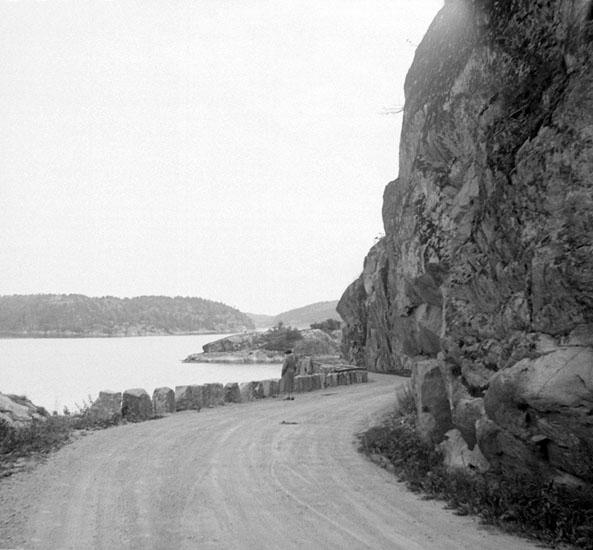 (Stereo karta XXI) Vägen Dyne-Hogdal, norrut. 11 september 1930.