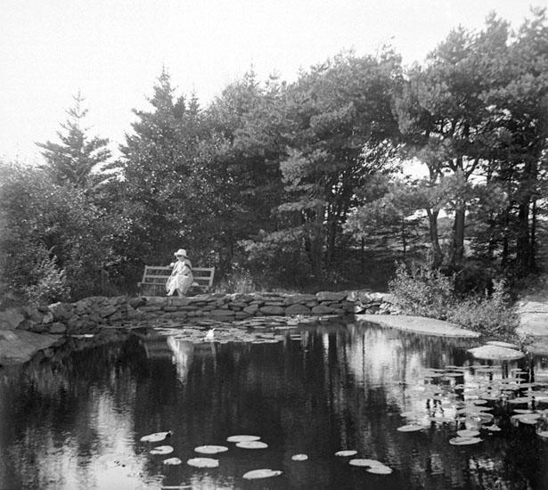(Stereo karta XVII) Skogstjärn mellan S:t Eriks park och Svarte mosse. 27 Augusti 1926.
