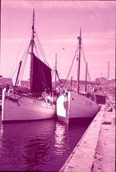"""12. Fiskebåtar i Mollösund"""